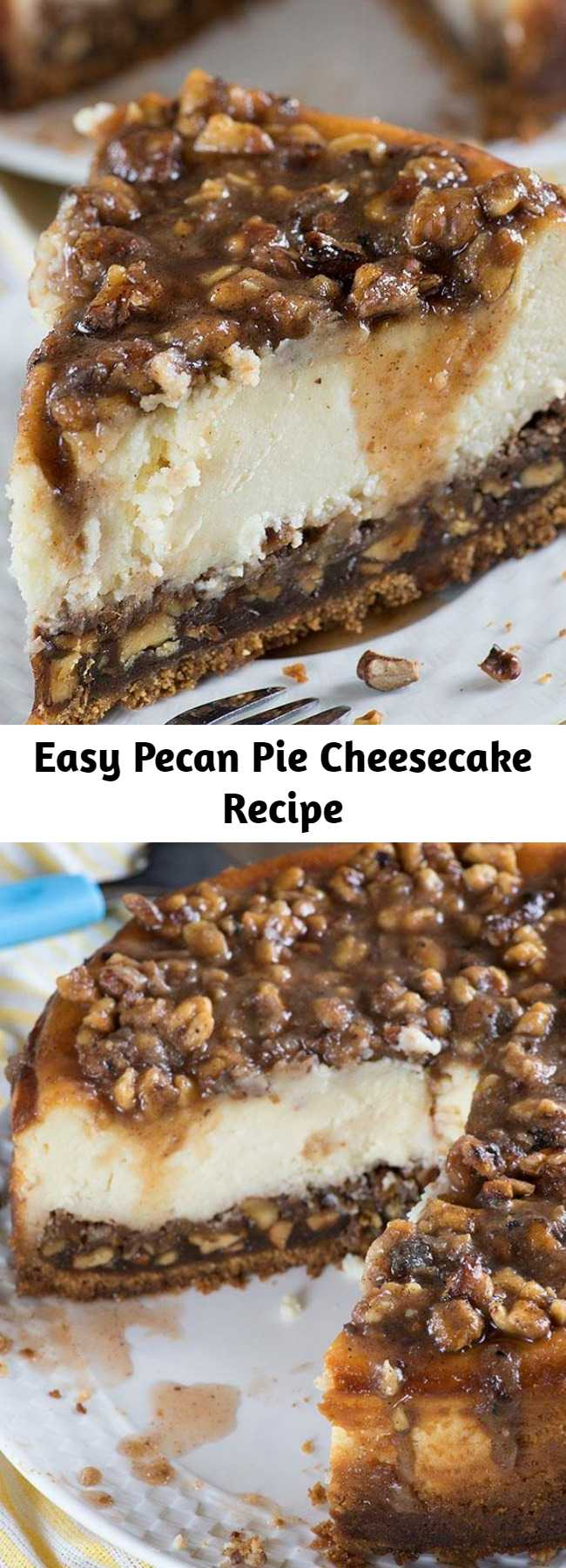 Easy Pecan Pie Cheesecake Recipe - This dreamy Pecan Pie Cheesecake is the perfect Thanksgiving treat. A combination of classic pecan pie and creamy cheesecake makes a tasty twist of two traditional treats!