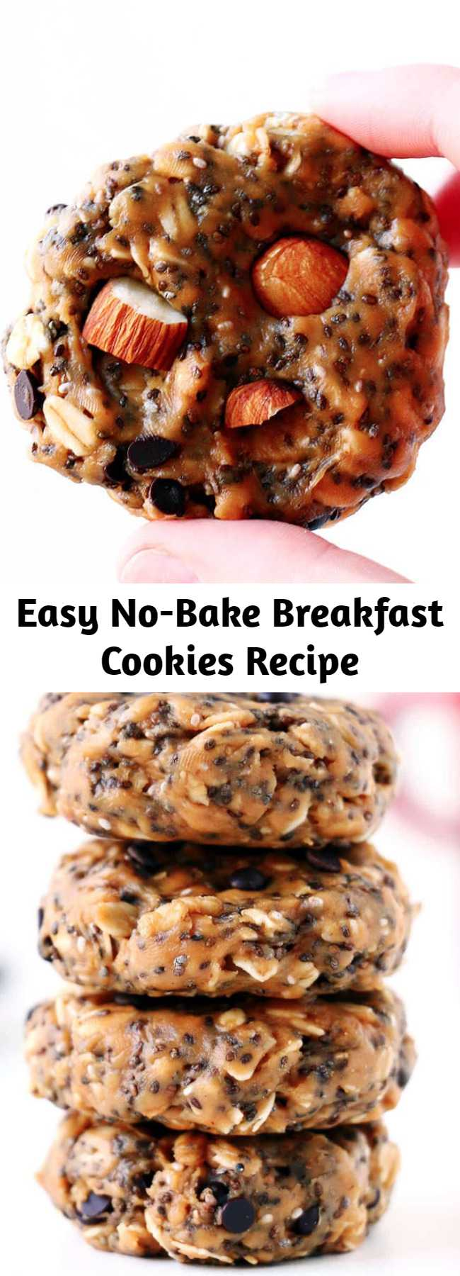 Easy No-Bake Breakfast Cookies Recipe - These No-Bake Breakfast Cookies are easy to make, healthy, packed with protein and simply delicious. They can be whipped up in less than 5 minutes and stored for up to two weeks. #breakfast #breakfastrecipes #breakfastideas #breakfastcookies #healthy #healthyrecipes #healtyfood #nobake #nobakecookies #snacks #snackideas #easyrecipe #recipes