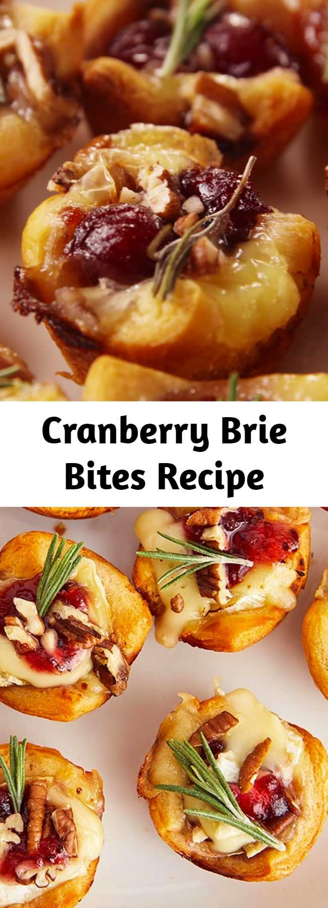 Cranberry Brie Bites Recipe - These little guys are the perfect appetizer to make during the holidays. Not only do they come together in seconds, they disappear in seconds too! Canned cranberries work great, but if you've got homemade cranberry sauce leftover, use it! #food #comfortfood #holiday #lunch #dinner #easyrecipe #recipe #inspiration #ideas #home