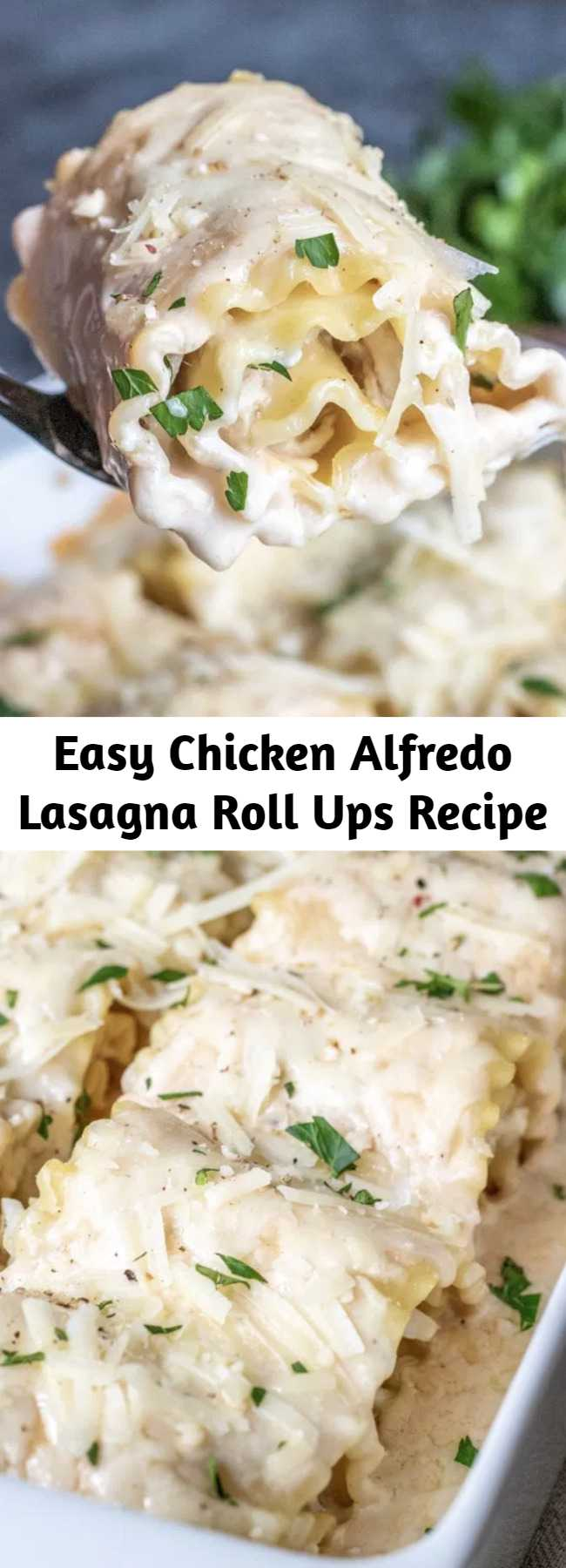 Easy Chicken Alfredo Lasagna Roll Ups Recipe - These Chicken Alfredo Lasagna Roll Ups are all of the flavors of classic Chicken Alfredo rolled up into lasagna noodles to make easy lasagna rolls. A simple weeknight dinner recipe that the whole family will love. #lasagna #chickenalfredo #pasta #casserole