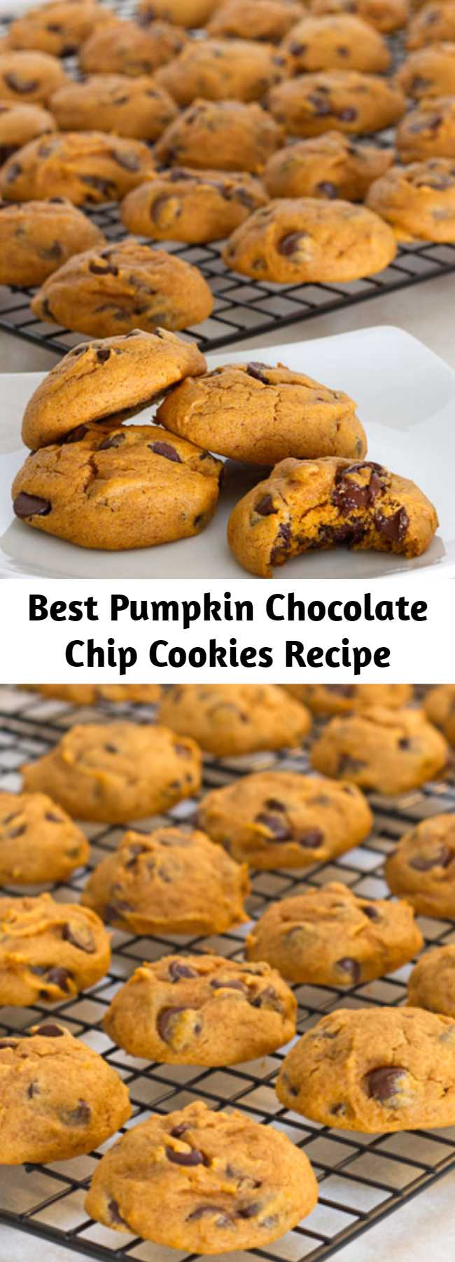 Best Pumpkin Chocolate Chip Cookies Recipe - These pumpkin chocolate chip cookies are the essential fall cookie! Chewy and cake-like, they're sure to be a hit at your next tailgate or fall party!