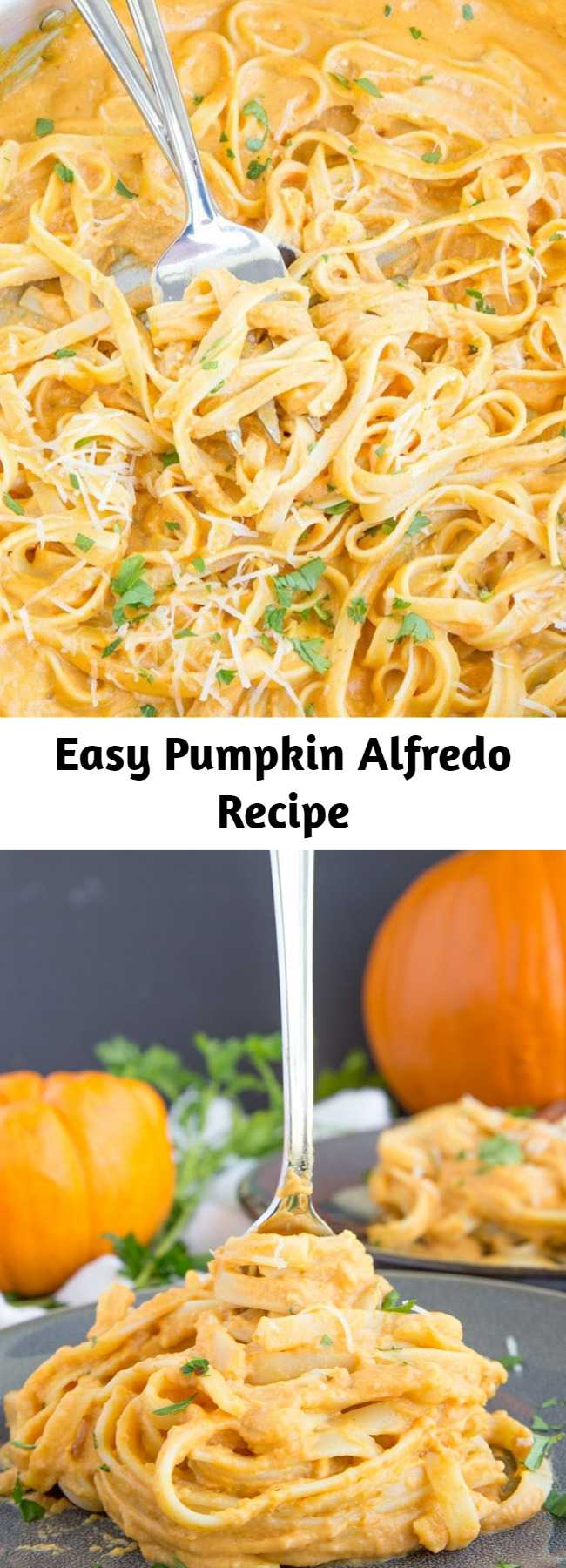 Easy Pumpkin Alfredo Recipe - This Pumpkin Alfredo is creamy, rich and delicious, and without all the calories and fat of a regular Alfredo sauce. A perfect fall dinner that's easy enough for a weeknight meal and you'll never miss the cream! - pumpkin recipes for the win!