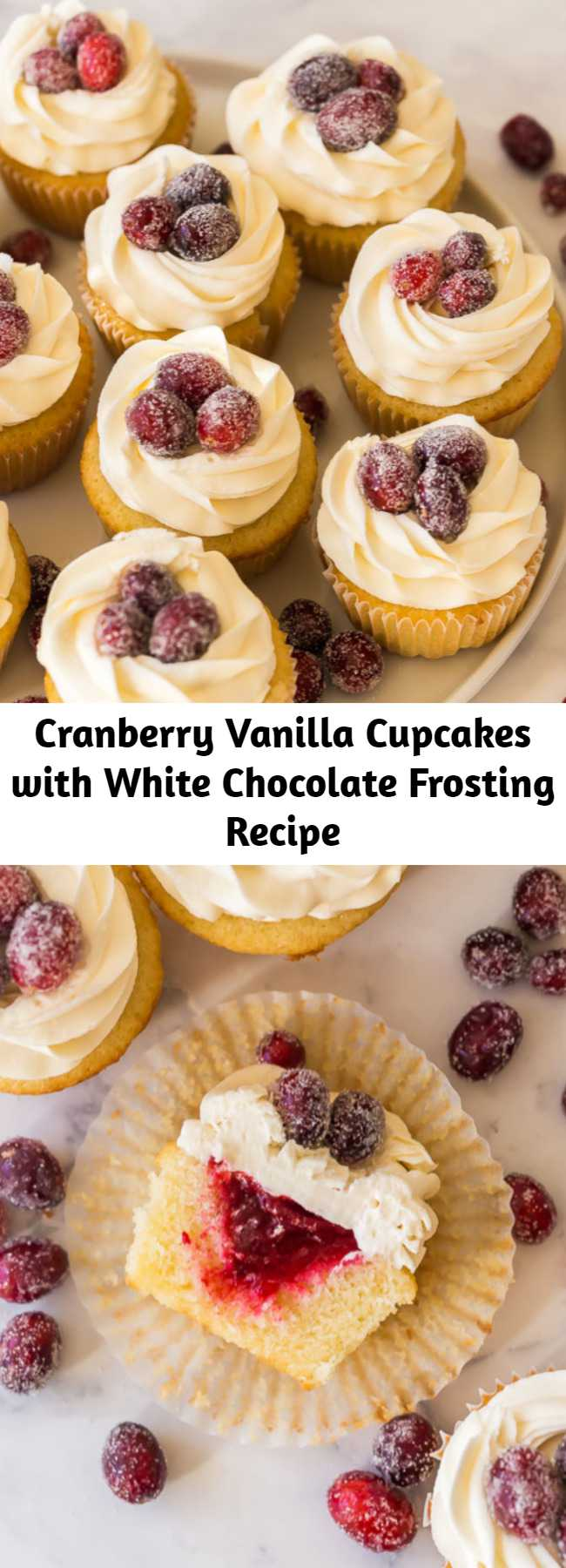 Cranberry Vanilla Cupcakes with White Chocolate Frosting Recipe - Vanilla cupcakes, filled with homemade cranberry filling and topped with a swirl of white chocolate frosting — the perfect festive holiday treat!