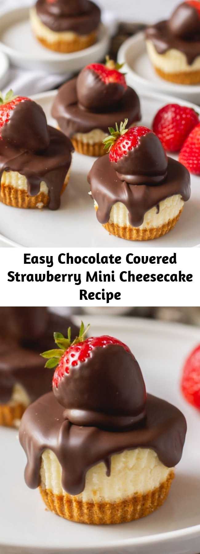 Easy Chocolate Covered Strawberry Mini Cheesecake Recipe - The best way to serve these classic mini cheesecakes is with chocolate covered strawberries on top! Check out this recipe for light and airy mini cheesecakes with a graham cracker crust – they're a delightful twist on the typical dense and creamy cheesecake!