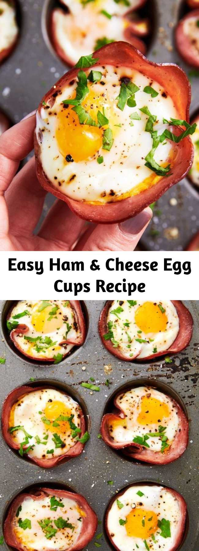 Easy Ham & Cheese Egg Cups Recipe - This low-carb breakfast comes together in no time. Seriously, you only need 20 minutes! Perfect as a light savoury snack, keto breakfast or lunch or a portable picnic recipe idea, everyone will love these little egg cups.