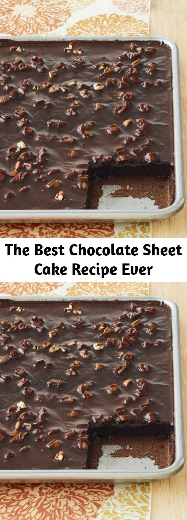 The Best Chocolate Sheet Cake Recipe Ever - It's moist beyond imagination, chocolatey and rich like no tomorrow, and 100% of the time, causes moans and groans from anyone who takes a bite.